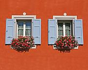 Window Box Prints - Pair of Blue Shutters Print by Tom Reynen
