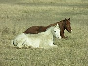 Field Pyrography Posters - Pair of Horses Poster by Yumi Johnson