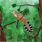 Puerto Rico Digital Art Prints - Pajaro bobo Mayor Puerto Rican Lizard Cuckoo Print by Yiries Saad