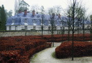 Bare Trees Art - PALACE of VERSAILLES ESTATE HOUSE by Daniel Hagerman