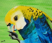 Parrot Paintings - Pale Headed Rosella by Una  Miller