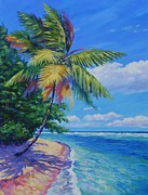 Bay Islands Painting Framed Prints - Palm at the Waters Edge Framed Print by John Clark