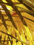 Fan Metal Prints - Palm B4 Metal Print by Kaypee Soh - Printscapes