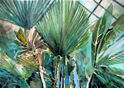 Rain Drawings Originals - Palm Light by Mindy Newman