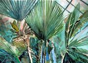 Palm Light Print by Mindy Newman
