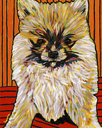David Kent Collections Framed Prints - Palm Pom Puppy Framed Print by David  Hearn