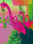 Flamingos Posters - Palm Springs Flamingos 1 Poster by Randall Weidner