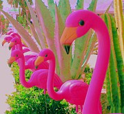 Flamingos Posters - Palm Springs Flamingos 5 Poster by Randall Weidner