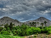 Lush Green Framed Prints - Palm Springs HDR 013 Framed Print by Lance Vaughn