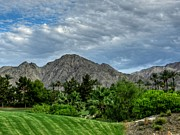 Lush Green Framed Prints - Palm Springs HDR 014 Framed Print by Lance Vaughn
