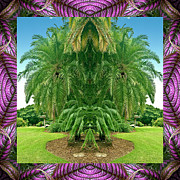 Ally Framed Prints - Palm Tree Ally Framed Print by Bell And Todd