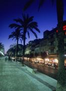 Night Cafe Posters - Palm Tree Lined Promenade With People Poster by Axiom Photographic