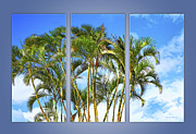Matte Posters - Palm Triptych Blue Matte Poster by Cheryl Young