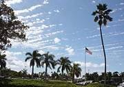Hickam Photos - Palms and Old Glory by Craig Wood