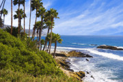 Heisler Park Framed Prints - Palms and Seashore Laguna Beach California Coast Framed Print by Utah Images