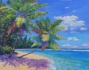 Clarke Paintings - Palms at Winter Haven by John Clark