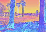 Florida Bridge Photos - Palms in the Park by DigiArt Diaries by Vicky Browning