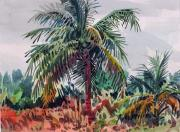 Coconut Paintings - Palms on Big Pine Key by Donald Maier