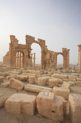 World Cities Posters - Palmyra Ruins, Syria Poster by Michele Falzone