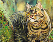 Photorealism Painting Posters - Palo Verde Kitty Poster by Baron Dixon