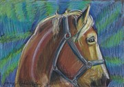 Hores Framed Prints - Palomino  Drawing Framed Print by Jamey Balester