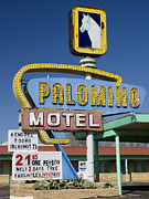 Motel Metal Prints - Palomino Motel Route 66 Metal Print by Carol Leigh