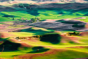 Burst Framed Prints - Palouse Hills 3 Framed Print by Niels Nielsen