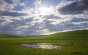 Puddle Prints - Palouse Sun Print by Idaho Scenic Images Linda Lantzy