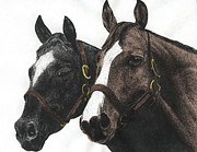 Country And Western Drawings - Pals by Mike OBrien