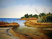 Outer Banks Paintings - Pamlico Sound Serenity by Shirley Braithwaite Hunt