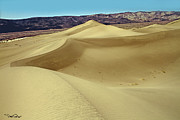 Sand Dunes Photo Originals - Panamint Dunes by David Salter