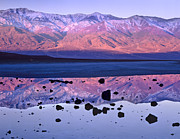 Panamint Valley Posters - Panamint Range Reflected In Standing Poster by Tim Fitzharris