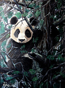 Panda Bear Paintings - Panda in tree by Nick Gustafson