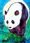 Panda Bear Paintings - Panda by Jo Lynch