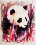 Panda Bear Paintings - Panda by Rachel Christine Nowicki