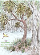 Typical Drawings Framed Prints - Pandanus Tea Tree Lagoon Framed Print by Desley Brkic
