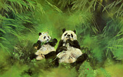Panda Bear Paintings - Pandas  by Odile Kidd