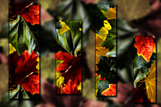 Green Foliage Prints - Panels of Fall Print by Cecil Fuselier