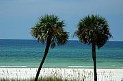 Florida Panhandle Framed Prints - Panhandle Beaches Framed Print by Susanne Van Hulst