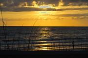 Judy Hall-Folde - Panhandle Sunset
