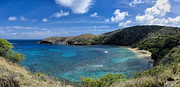 Bay Islands Posters - Panorama Of Hanauma Bay, Oahu Poster by Alvis Upitis