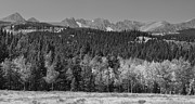 Fall Photos Framed Prints - Panorama Scenic Autumn View of The Colorado Indian Peaks BW Framed Print by James Bo Insogna