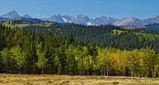 Panorama Scenic Autumn View Of The Colorado Indian Peaks Print by James Bo Insogna