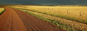 Storm Digital Art Prints - Panoramic Prairie Storm Canada at Sunset Print by Mark Duffy