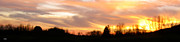 Mesmerizing Sunset Color Metal Prints - Panoramic Sunset Metal Print by Debra     Vatalaro