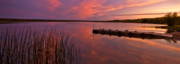 Sweden  Digital Art - Panoramic Sunset Northern Lake by Mark Duffy