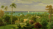 Sail Boats Painting Prints - Panoramic View of the Harbour at Nassau in the Bahamas Print by Albert Bierstadt