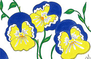 Pansies Drawings Framed Prints - Pansies Framed Print by Lindsay Mangham