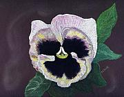 Single Pastels Posters - Pansy Poster by Diane Frick