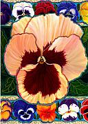 Anne Nye Acrylic Prints - Pansy Faces Iii Acrylic Print by Anne Nye